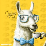 the fanciest llama, indeed