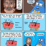 The Awkward Yeti | Scars