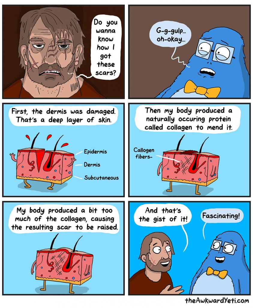 The Awkward Yeti   Scars