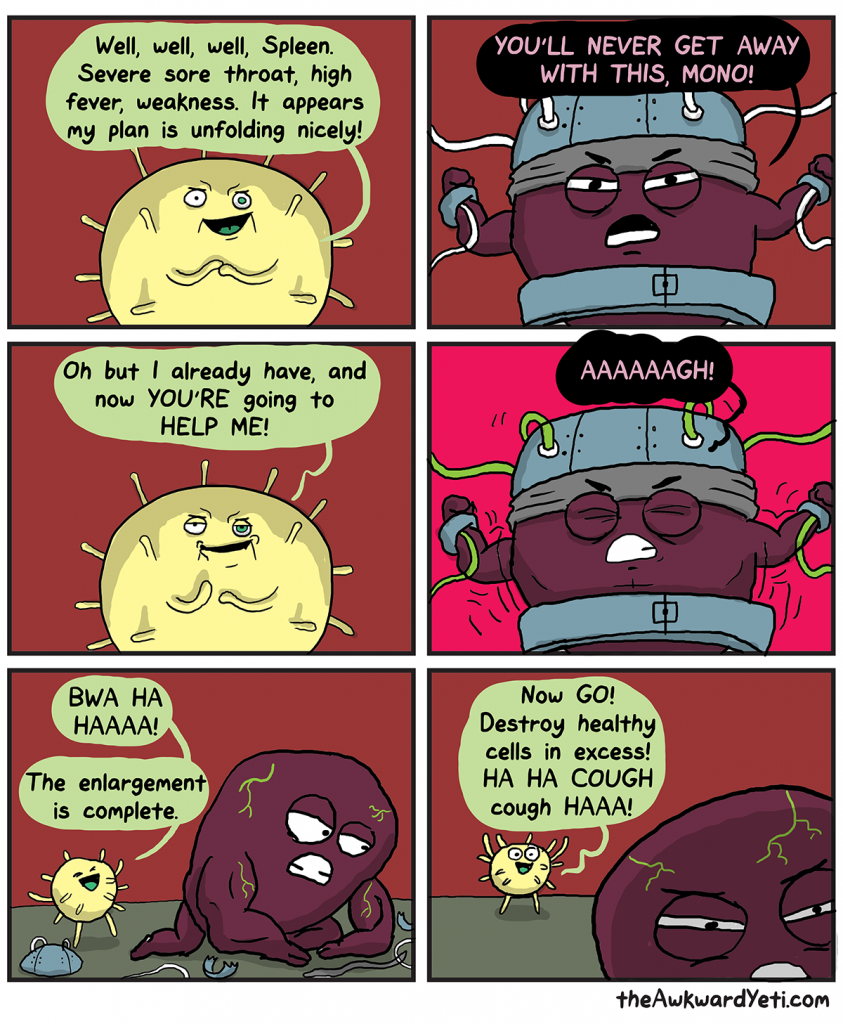 The Awkward Yeti | Splenomegaly
